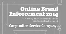 Online Brand Enforcement 2014